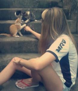 quatro gatas